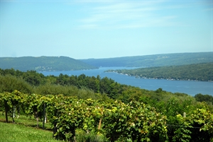 retire in Corning & the Southern Finger Lakes