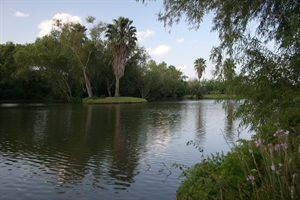 retire in Weslaco - Rio Grande Valley
