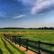Best Places to Retire in Rural Areas